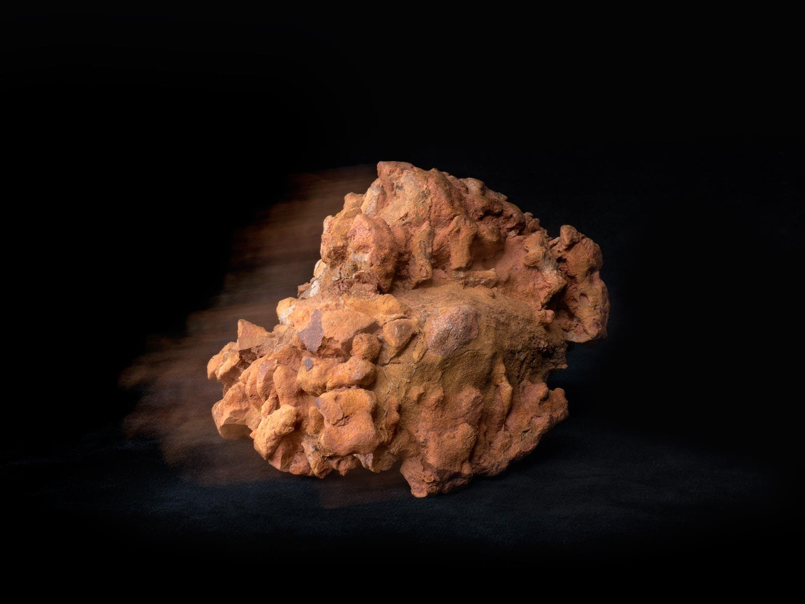 Andròmines del bosc - 7 - BadiaCasanova