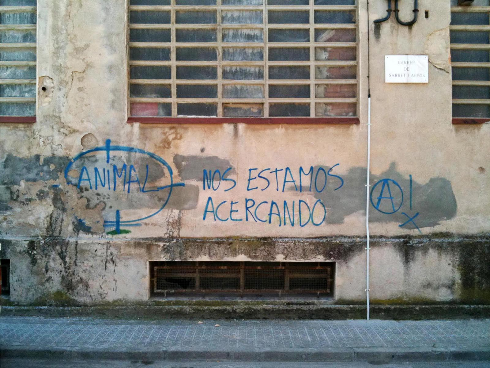Grafits - 9 - BadiaCasanova